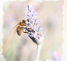 Natural Beauty by Jazzyjane