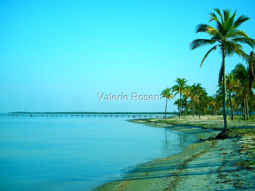 Paradise a.m. by Valerie Rosen