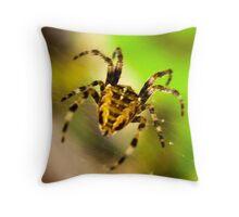 Macro Spider Throw Pillow