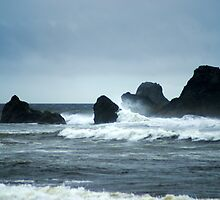 Ruby Beach by Loisb