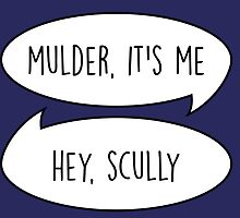 Mulder, it's me/Hey Scully by byebyesally