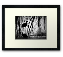 The Colors Of Photography ~ Part Six Framed Print