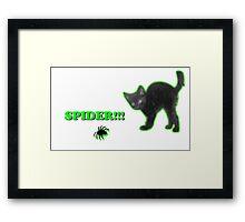 Spider!!! Framed Print