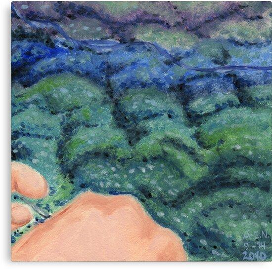 Knitting the Ocean by Amy-Elyse Neer