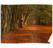 Golden leave carpet Poster