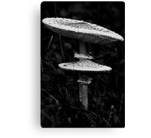 Two Rooms Canvas Print