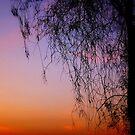 sky colors by Saif Zahid