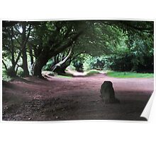 The Triscombe Stone Poster