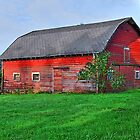 The Old Red Barn by Jennifer Hulbert-Hortman