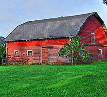 The Old Red Barn by Jennifer Hulbert-Hortman