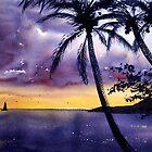 Hawaiian Sunset by Joe Cartwright
