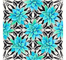 Watercolor succulent pattern on monochrome background Photographic Print