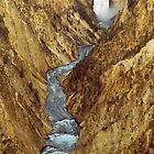 The Grand Canyon of the Yellowstone River by Joe Elliott