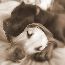 best friends by nkluke147