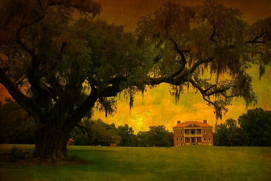 Drayton Hall Plantation in Charleston SC by Susanne Van Hulst