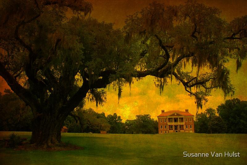 Drayton Hall Plantation in Charleston SC by Susanne Van Hulst