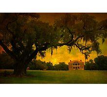 Drayton Hall Plantation in Charleston SC Photographic Print