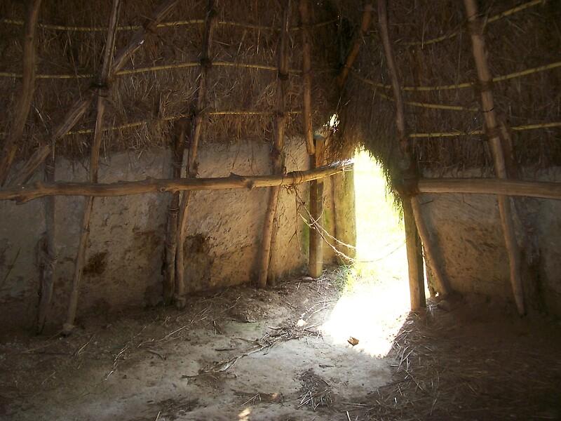 u0026quot inside the home of the natchez indians u0026quot  by dan mckenzie