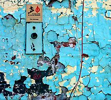 In Case of Fire by Peter Baglia