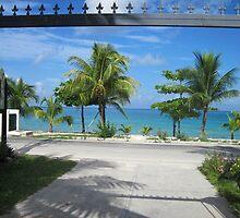 Tropical scenery by mltrue