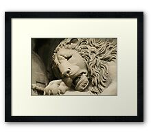 Crying Lion Framed Print