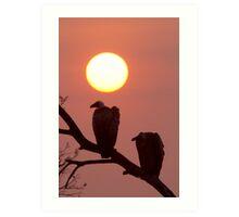 Vulture Sunset Art Print