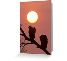 Vulture Sunset Greeting Card
