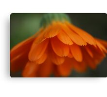 orange scales Canvas Print