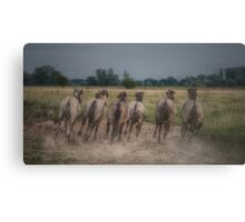 Leave Those Bad Boys Alone Canvas Print