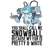 Snowball - Rick and Morty Photographic Print