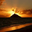 Sunrise by pljvv