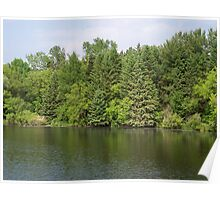 Beautiful Landscape on the Apple River Poster
