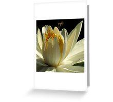 Pond Treasures ~ Part Three Greeting Card