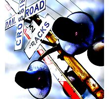 railroad crossing gates Photographic Print