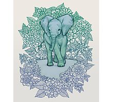 Emerald Elephant in the Lilac Evening Photographic Print