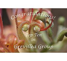 Grevillea Top Ten Banner Photographic Print