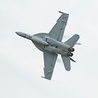 F/A-18F Super Hornet by inmotionphotog
