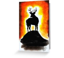 Sunset Stag Greeting Card