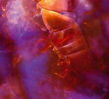 MAGENTA IN THE SKY by laureen warrington