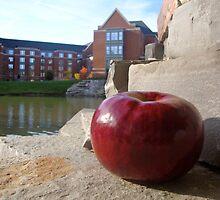 Big Apple by Amy Brookins