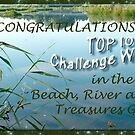 Top10- banner - Beach River Lake Treasures by steppeland