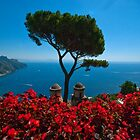 Postcard from Ravello. by naranzaria