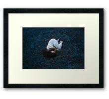 Sleeping girl in forest Framed Print