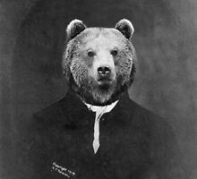 Distinguished Bear by amorlibertas