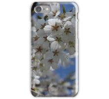 White Cherry Blossom Flowers iPhone Case/Skin