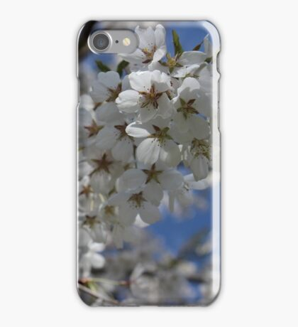 White Cherry Blossom Flowers iPhone Case/Skin