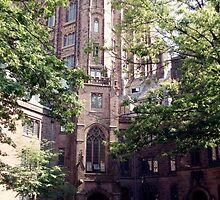 Yale University  by ellyd