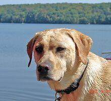 Daisi at the lake by joefleis