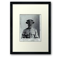 Distinguished Bison Framed Print
