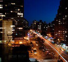 Night in New York by bertadp